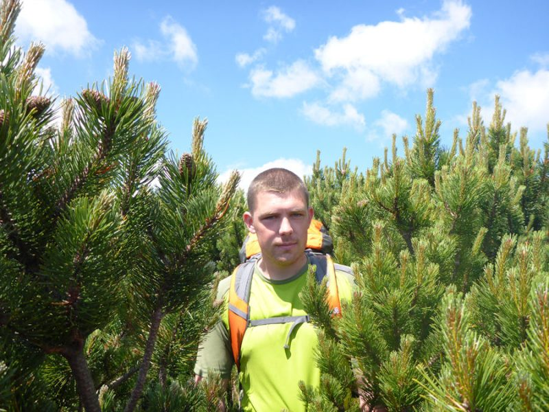 Fighting the Dwarf Pine on the Nizke Tatry Ridge